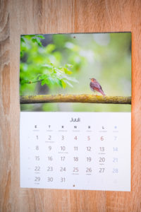 klamberköites kalender